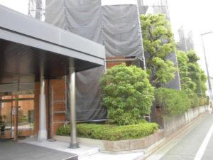 世田谷高級住宅地のせっ器質タイルのマンション玄関