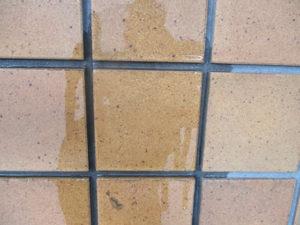 水洗い後のせっ器質タイル。吸水率高く水が浸透します。