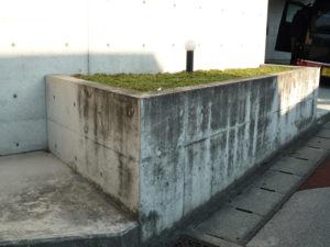 築5年、撥水剤塗装の効果なく汚れたコンクリート建築の花壇