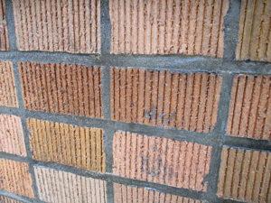 塗布直後のタイル表面