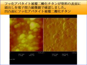 フッ化アパタイト被覆二酸化チタンの塗料での頭出しを原子間力顕微鏡で確認しました。