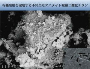 中途半端なアパタイト被覆でも二酸化チタンをアクリルバインダーにそのまま入れると塗膜は破壊されます