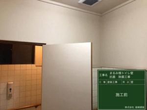 トイ壁面・ドア等細菌・ウイルスが付着する部分に抗菌施工