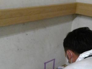 細菌測定 カビ発生の壁面下部のクロス部分を測定