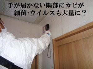 細菌測定 カビ発生の壁面上部のクロス部分を測定