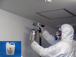 作業内容 カビで汚れた壁面への光触媒抗菌塗装