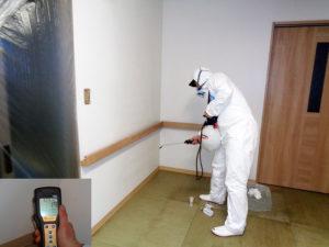 劇甚汚染の壁面下部クロスの菌数は1239から19に減少