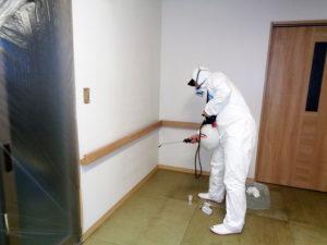 カビ除去後、次亜塩素水C-BLOCK1500ppmを塗布