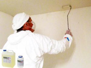 カビ発生の壁面上部6094汚染部のカビ除去。